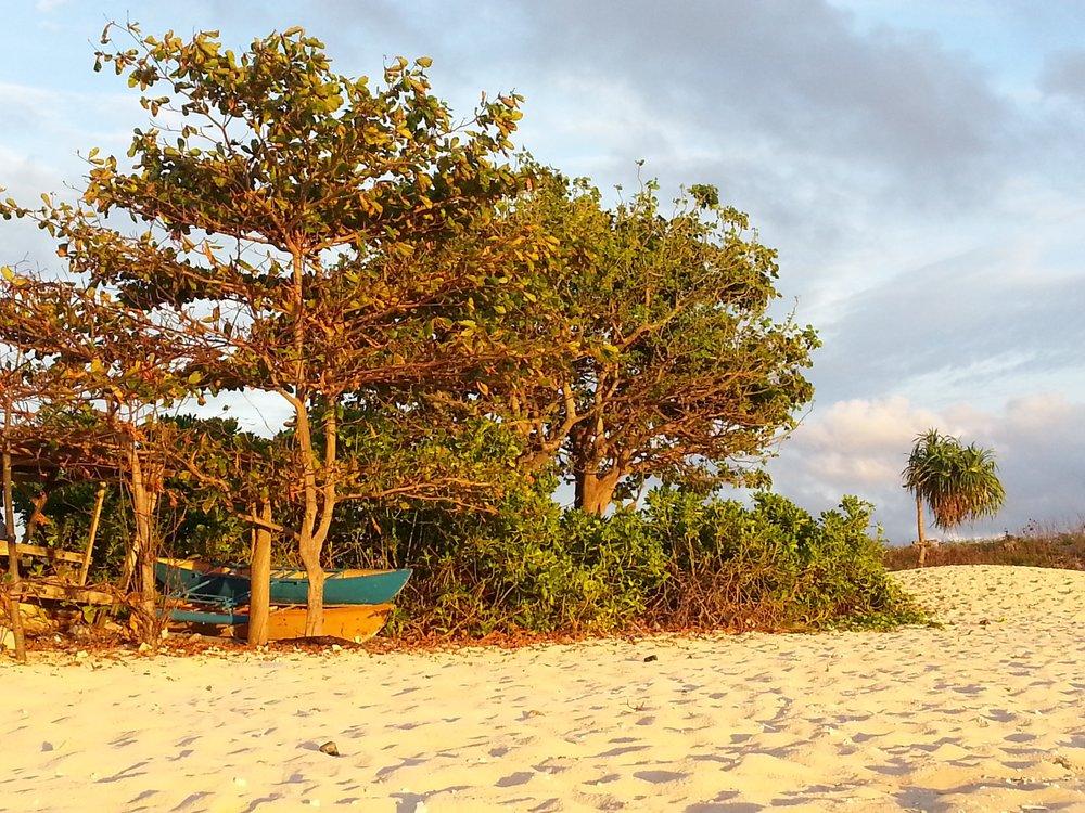 Nauru Shore.jpg