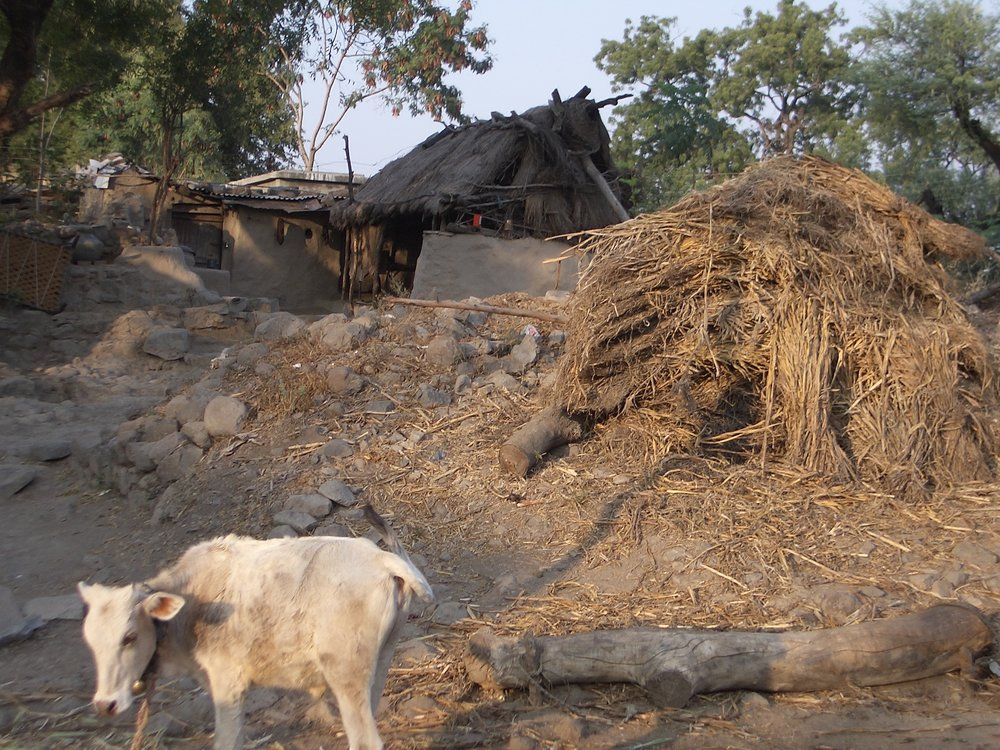 Mud huts with straw rooftops made from dried cow manure