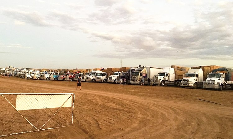 Hay trucks lined up at Longreach for the night