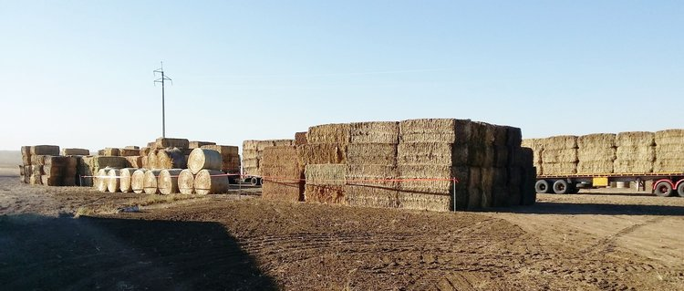 Generous donations of hay awaiting collection by local farmers