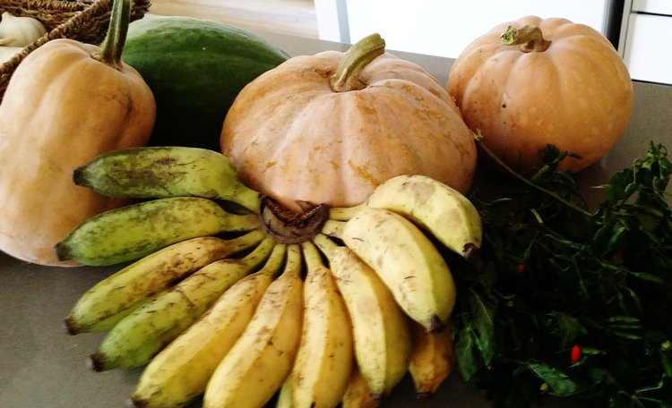 Bush pumpkins, bananas, chili padi and melons are grown locally