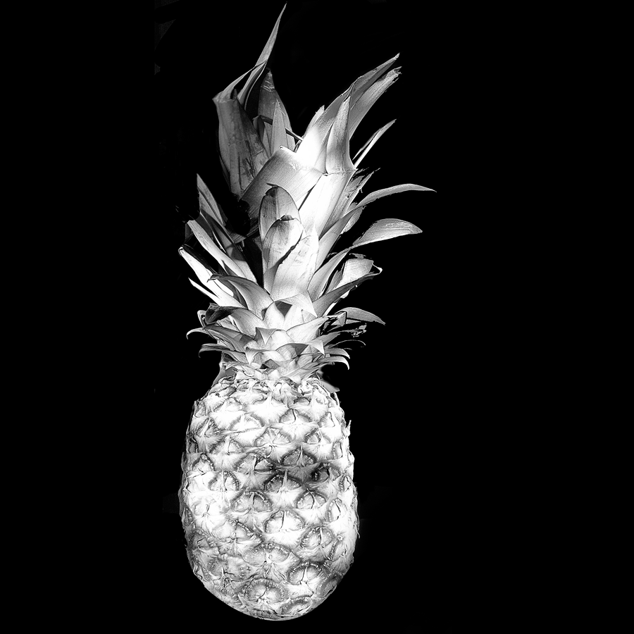 Pineapple-Web.png