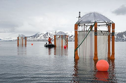 A scientist in Svalbard, Norway studying the effects of climate change on the oceans' chemistry.