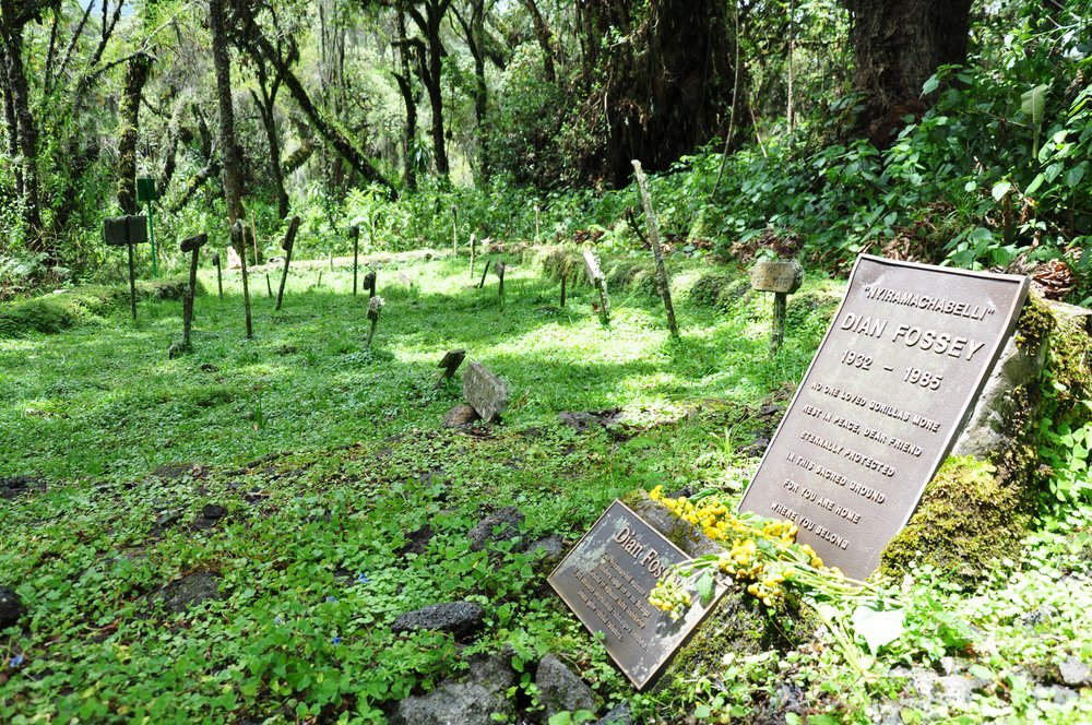 Dian Fossey's Tombe. Photo courtesy of Zinkiol/Creative Commons.