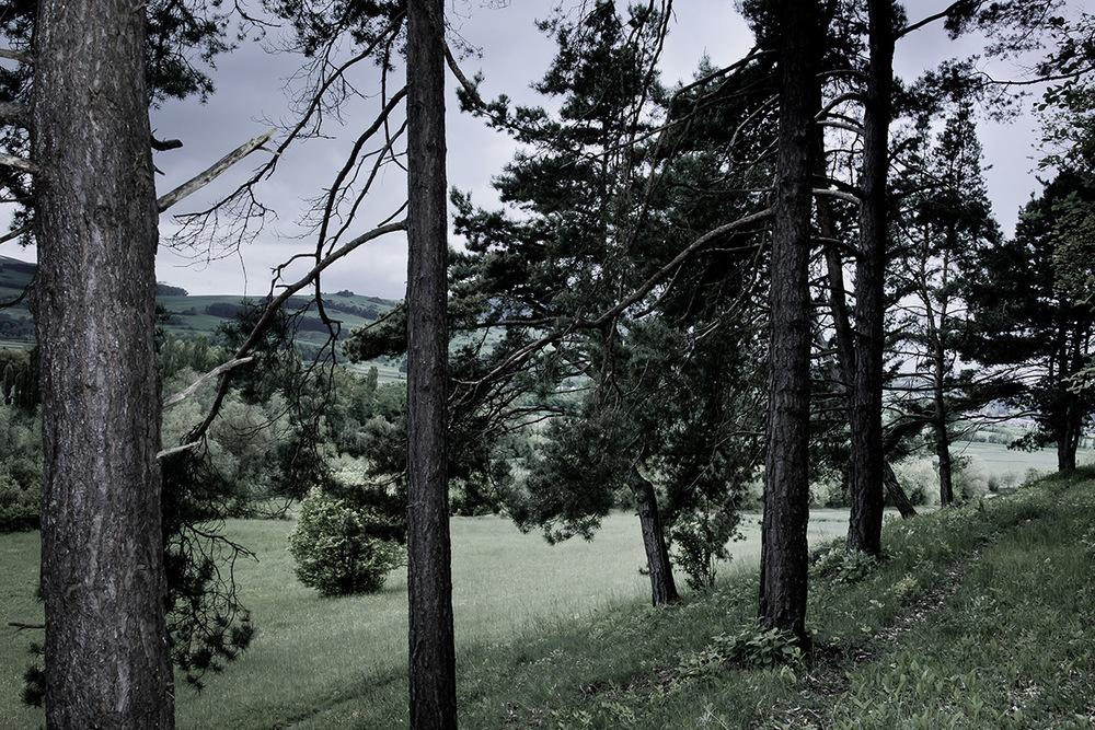 Steffen_Lutz_Fotografie_Landschaft_06.jpg