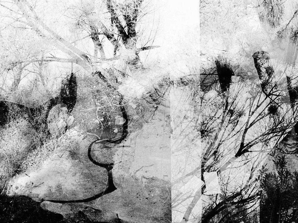 lines blurring # 11