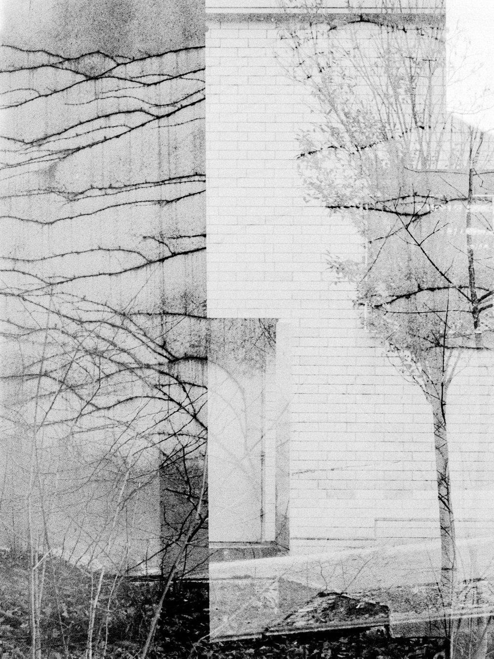 lines blurring # 20