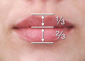 Image taken from Rohrich, et al. Plastic & Reconstructive Surgery Journal