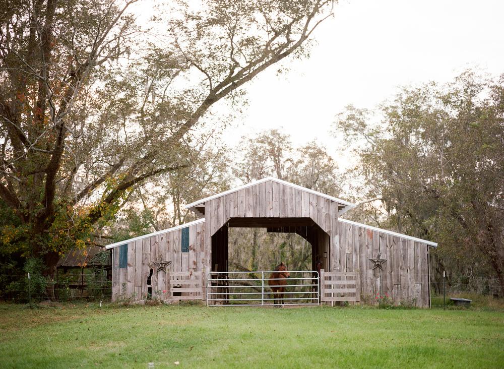 Montgomery-Alabama-Wedding-Photography-Engagements-Jeremy-Emily-James-14.jpg
