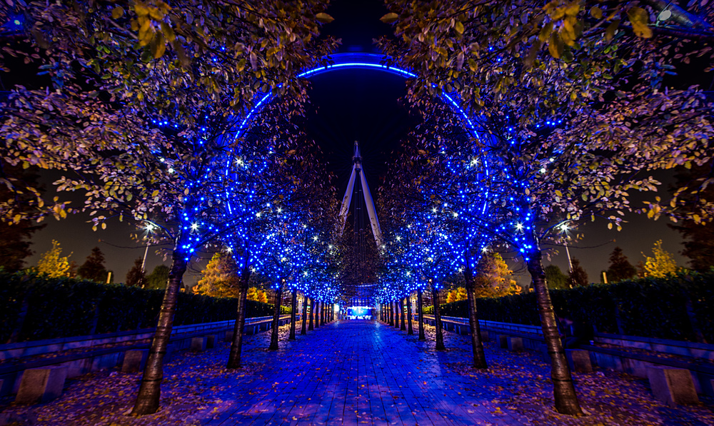 London South Bank-61 - website.jpg