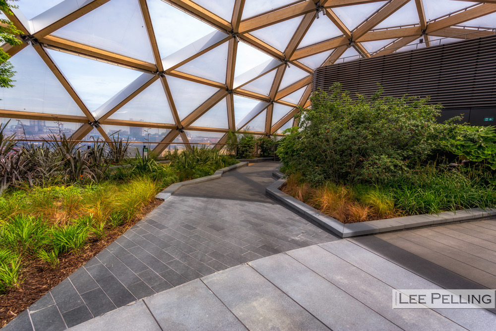 Canary Wharf Crossrail Rooftop Garden