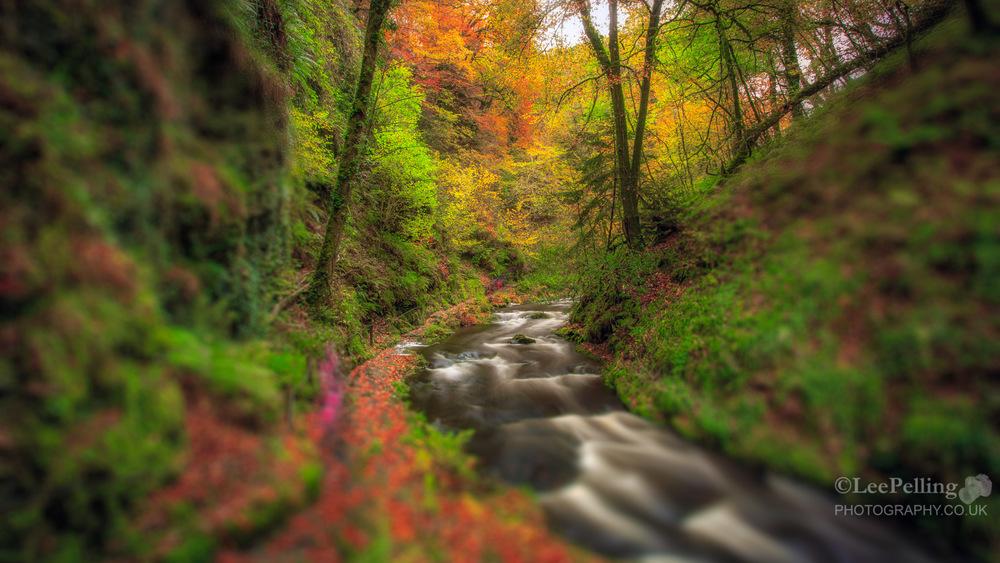 Lydford Gorge 6104