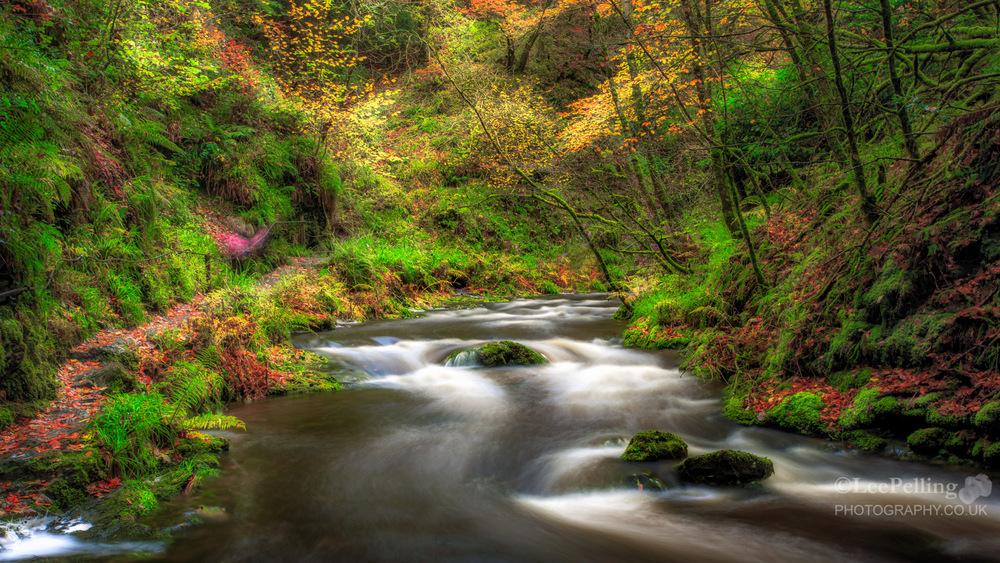 Lydford Gorge 6105