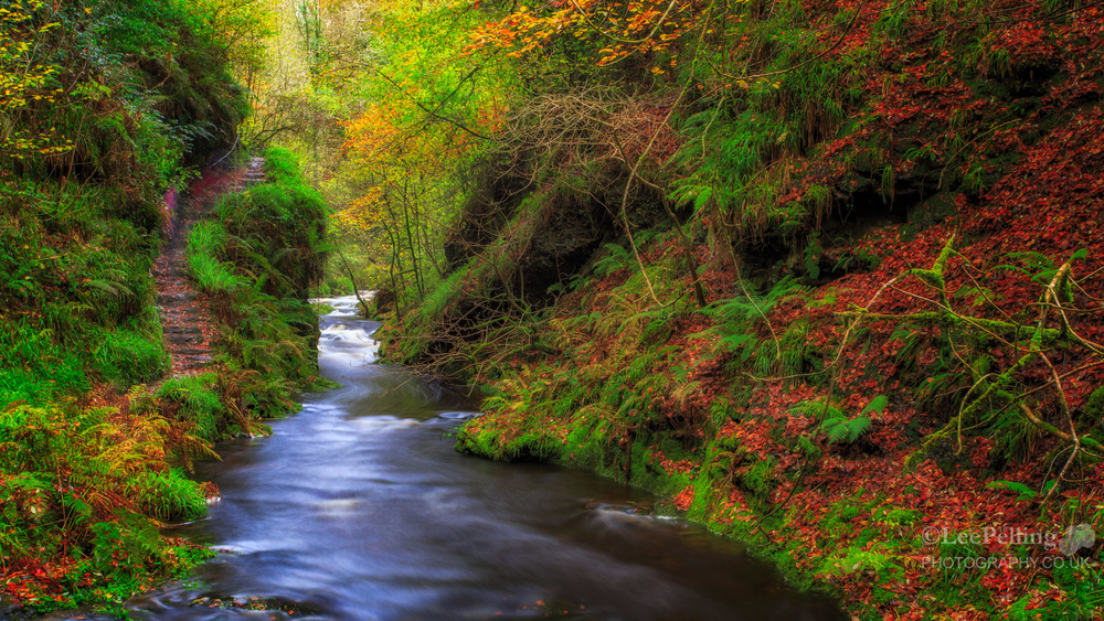 Lydford Gorge 6106