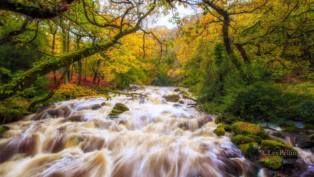 River Plym Dewerstone