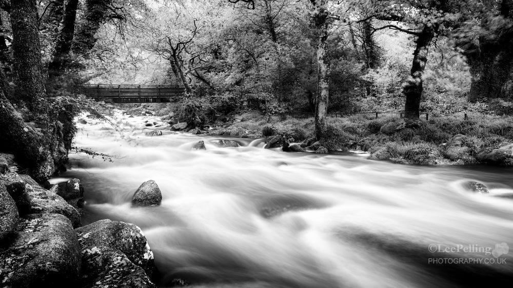 River Plym Dewerstone 6229