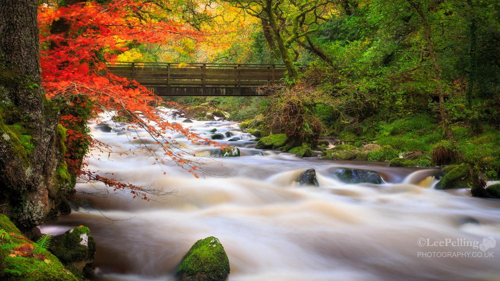 River Plym Dewerstone 6231