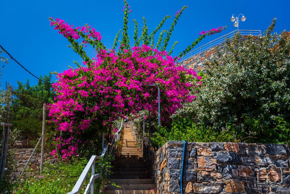 Crete-1784