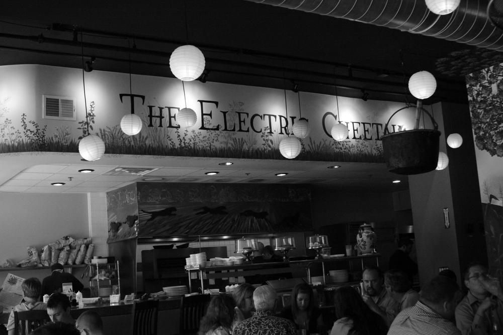 Electriccheetah