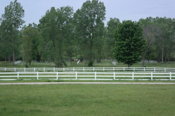 horsepastures