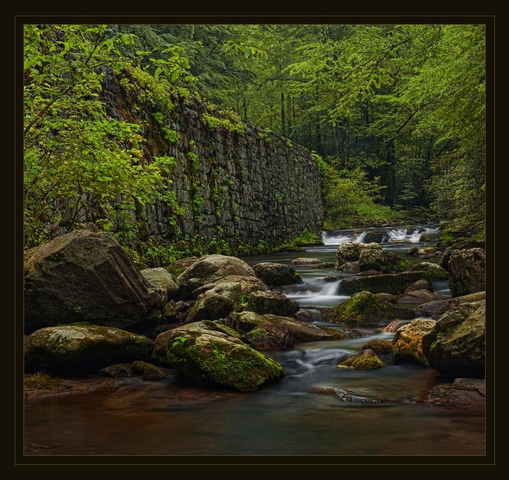 Natures Invitiation