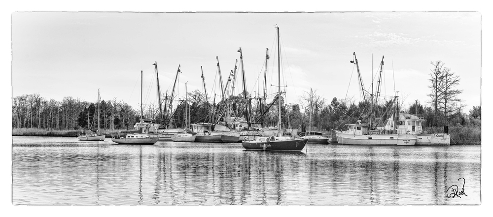 boatsforfacebook.jpg