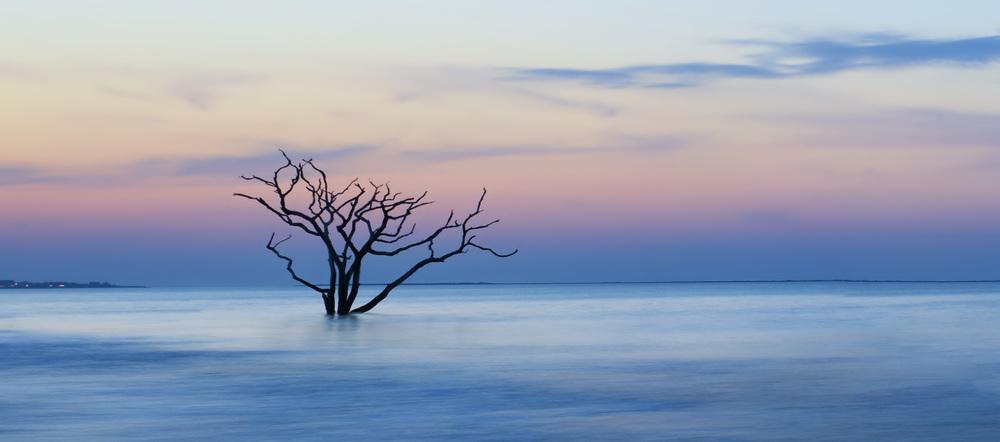 Botany Bay at Sunset.jpg