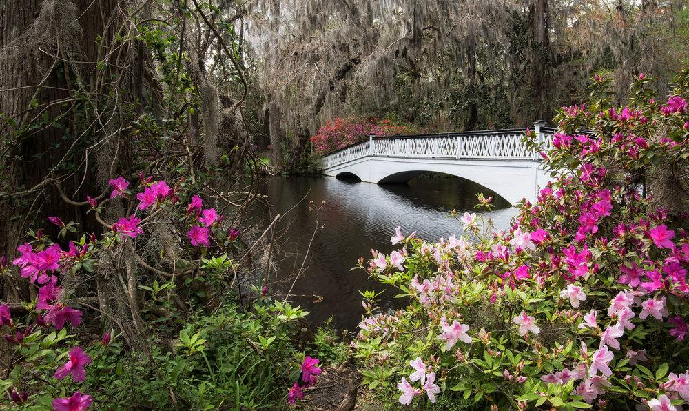 Charleston-Spring-18.jpg