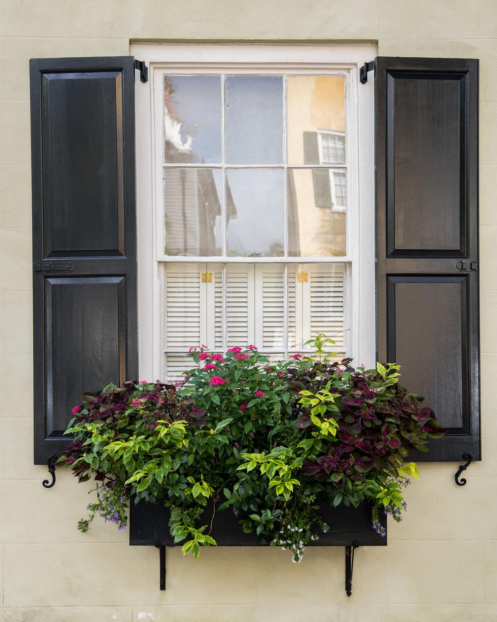 Window Box 4