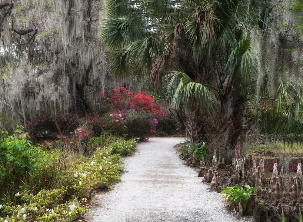 Tropical Lane