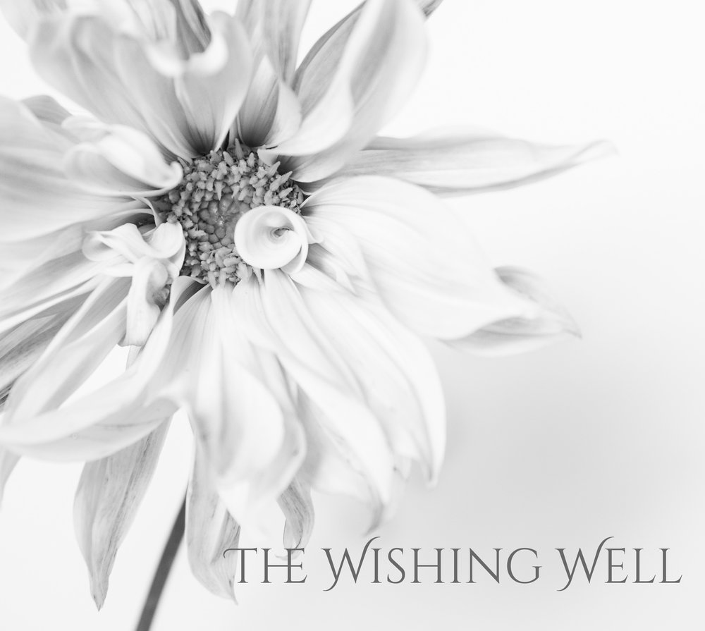 Wishing Well.jpg