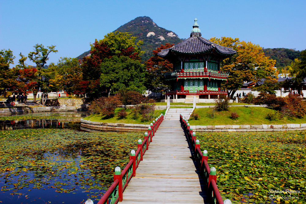In the middle of Gyeongbokgung Palace, you can find this lovely little pond. I spent some time here on my first day sitting with no one but my thoughts.