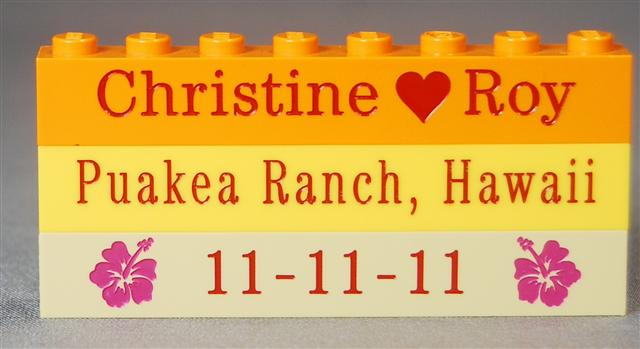 christine and roy wedding bricks7 (3).jpg
