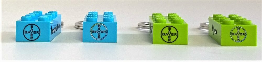 bayer keyrings option 2 logo short side (8 24 17).jpg