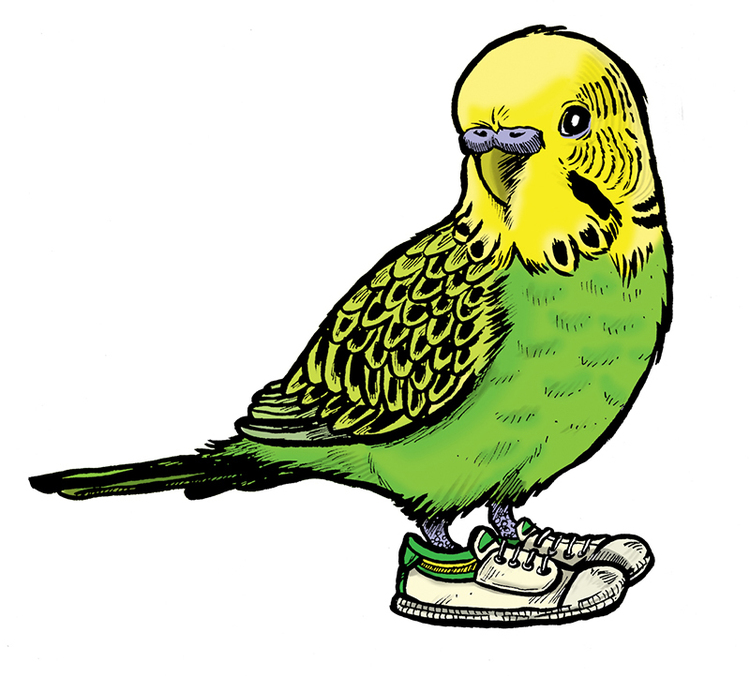Q. If you were a bird, what kind would you be? S. I just did a Buzzfeed quiz to find out, and it said I was a cockatiel. That doesn't seem right. Probably a sparrow. Q. Walking in someone elses shoes can really help people see different perspectives, how does your art allow people to do this? S. I think all art is about perspective, literally and conceptually you're getting someone else's viewpoint. Often as an illustrator you're working to convey your client's viewpoint, but it's your unique perspective that gets the job done. My art is about discovering images that capture something, a story or a moment. I guess that's my personal perspective there, that people can access - in the world created in the picture.