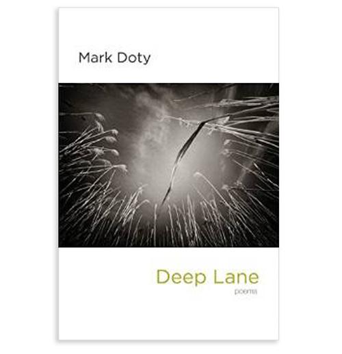 deeplane-1.jpg