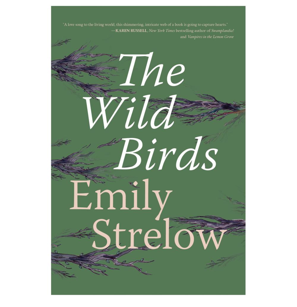 THE WILD BIRDS website.png