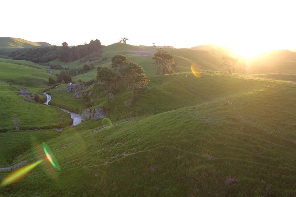 rolling-hills-froggatt-edge-new-zealand