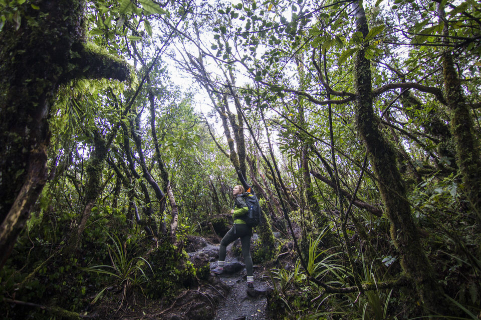 girl-hiking-tongariro-alpine-crossing-new-zealand