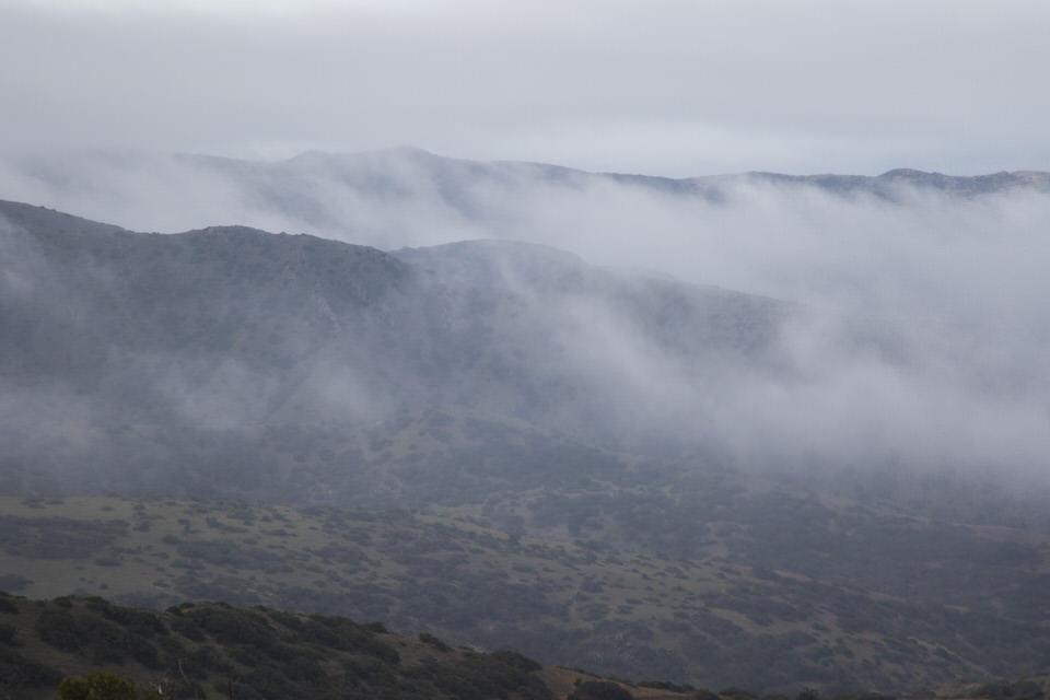 foggy-morning-catalina-island