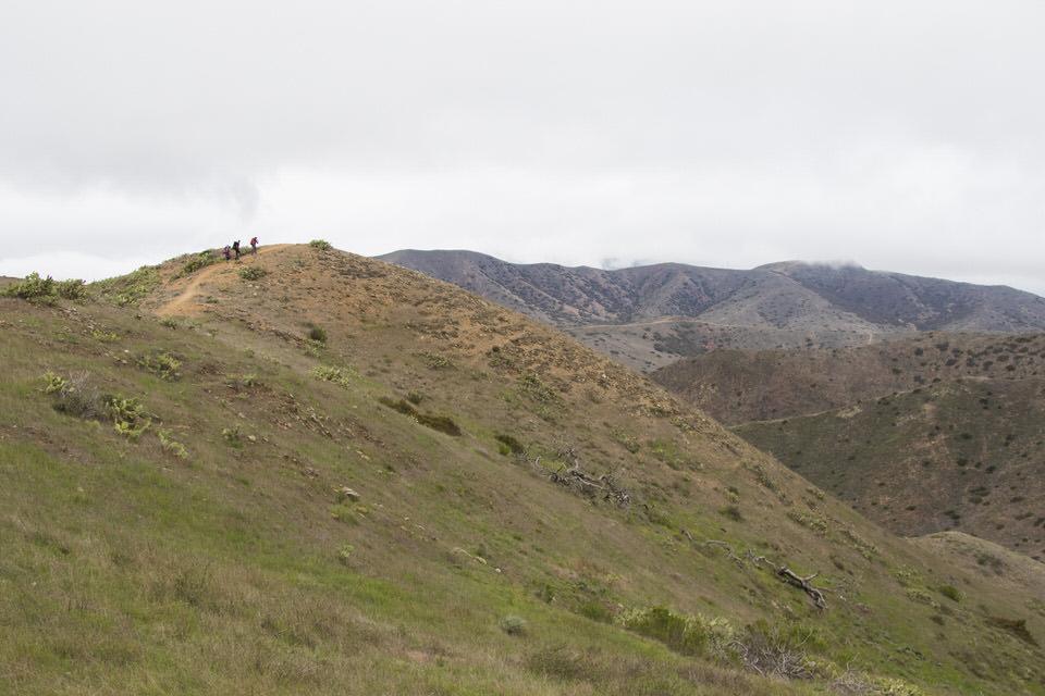 backpackers-hiking-trans-catalina-trail