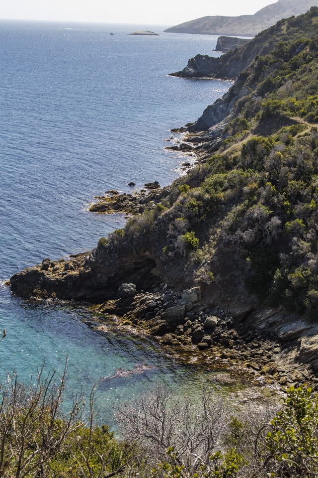 view-of-coastline-trans-catalina-trail