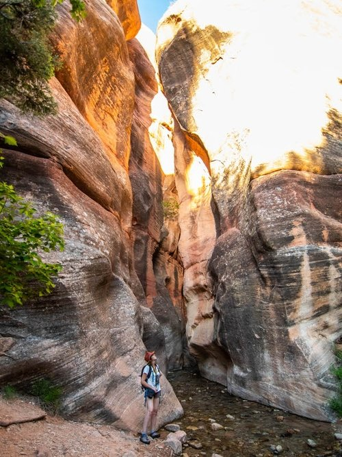 Entrance to the slot canyon, where you will start walking in the water.
