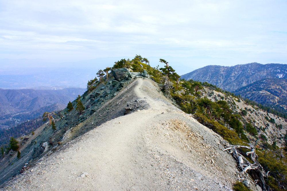 Devil's Backbone trail on Mount Baldy hike.