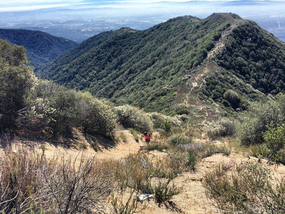 Bastards Ridge Hike to Mount Wilson