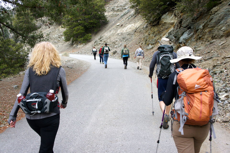 Hikers going up the paved Mt Baldy Road.