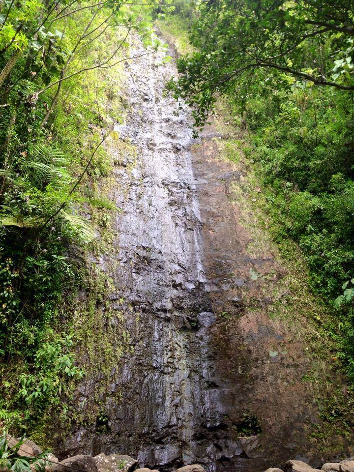 Manoa Falls trail is one of the best hiking trails in Oahu with waterfalls.