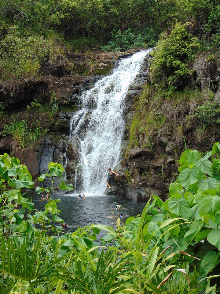Waimea falls is one of the best waterfall hikes in Oahu.