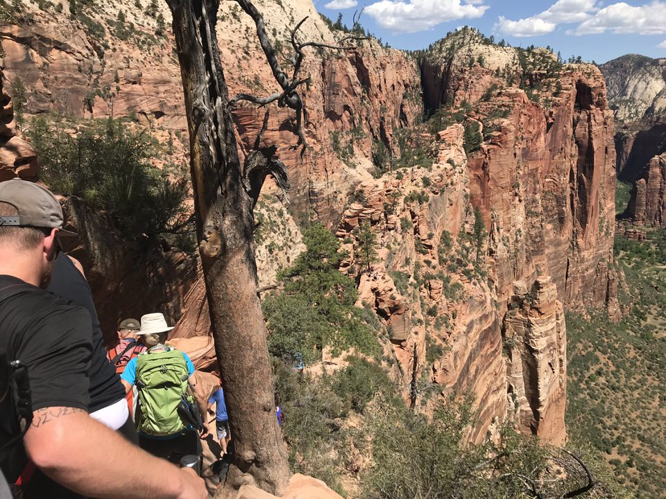 You can see all the people along the Angels Landing hike if you look close enough. They look like ants!