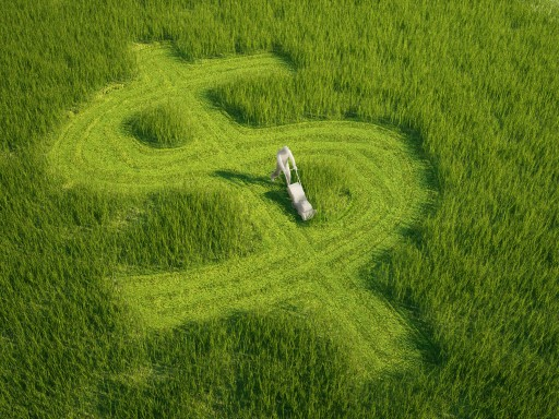 lawn money.jpg